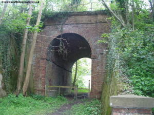 The path under the railway at Etchinghill